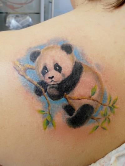 тату - панда и бамбук