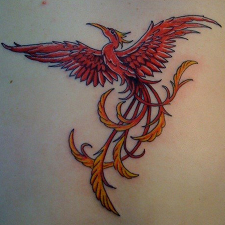 красная татуировка птицы феникс