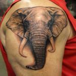 тату слона: значение
